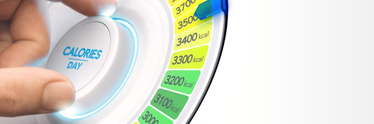 Calcola il fabbisogno calorico giornaliero